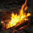 Royalty-Free Stock Photo: Camp fire burning in the night