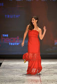NEW YORK, NY - FEBRUARY 06: Roselyn Sanchez wearing Tadashi Shoji walks the runway at The Heart Truth's Red Dress Collection during Fall 2013 Mercedes-Benz Fashion Week on February 6, 2013, NYC — Foto Stock