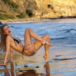 Sexy model posing at golden sunset at passific coast of California - Stock Photo