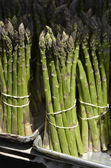 Asparagus bunches — Stock Photo