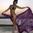 Stock Photo: Beautiful fashion model in design bikini holding floating bright fabric standing on the beach during sunset time with effective background of sky