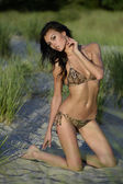 Brunette fashion model posing in animal print bikini on sunset time with effective background of dunes — Stock Photo