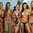 Designer Catalinlvarez and models posing backstage during Mercedes-Benz Swim Fashion Week — Stock Photo #28656133