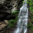 Waterfalls at Catskils mountains upstate NY — Stock Photo #30652165