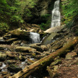 Waterfalls at Catskils mountains upstate NY at the summer time — Stock Photo #30652195