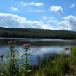 View to the mountain lake upstate ny at the summer time — Stock Photo #30652217