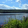 View to the mountain lake upstate ny at the summer time — Stock Photo #30652223