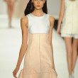 Stock Photo: Model at J. Mendel fashion show
