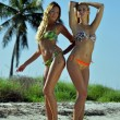 Two bikini models posing sexy in front of palm tree — Stock Photo
