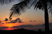 Tropical sunset with red sky — Stock Photo