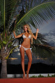Model at tropical location in bikini — Stock Photo