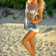 Blond model posing at the beach — Stock Photo #49899601