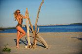 Sexy woman posing on the beach — Stock Photo
