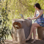 Portrait young charming woman laptop sitting stump — Stock Photo