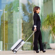 businesswoman with travel bag  — Stock Photo