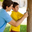 Boy and his father painting with chalk on the tree — Stock Photo