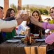 Having drinks and snacks at a bar — Stock Photo #34985611