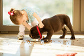 Girl feeding dog — Stock Photo