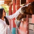 Girl petting couple of horses in the stables — Stock Photo