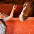 Girl interacting and having fun with horse — Stock Photo #41009831