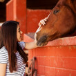 Woman touching and spending time with her horse — Stock Photo #41009855