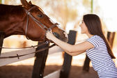 Woman face to face with a horse — Stock Photo
