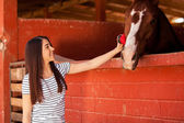 Woman brushing a horse at the stables — Stock Photo