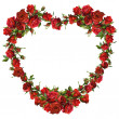 Stock Photo: Heart of red roses