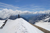 Mountains, glaciers and pastures Austrian Alps — Stockfoto