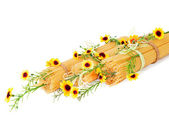 Uncooked Italian spaghetti decorated with yellow flowers isolate — Stock Photo