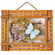Bamboo photo frame with abstract composition of butterflies, bir — Stock Photo
