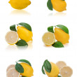 Set of fresh lemon citrus with cut and green leaves isolated on — Stockfoto #18464451