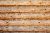 Light pine wood logs background — Stock Photo