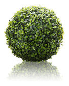 Green sphere from artificial grass with reflection isolated on w — Stock Photo