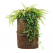 Composition of artificial flowers in old wooden barrel isolated — Stock Photo #25603947