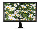 Black lcd monitor with flowering meadow isolated on white backgr — Stok fotoğraf