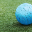 Stock Photo: Blue ball on green grass.
