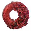 Composition of dried flowers and berries in shape of circle isol — Stock Photo