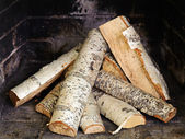 Fireplace with birch wood. — Foto Stock
