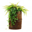 Composition of artificial flowers in old wooden barrel isolated  — Stock Photo