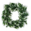 Wreath of fir branches isolated on white background.  — Photo