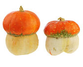Ornamental pumpkin isolated on white background. — Stock Photo