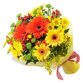 Bouquet from gerbera flowers isolated on white background. — Stock Photo
