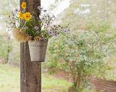 Martwa natura z dzikich kwiatów. — Zdjęcie stockowe