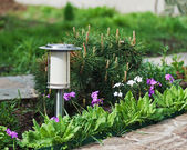 Solar-powered lamp on garden background.  — Stock Photo