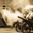 Cannon fire - Foto Stock