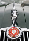 Classic Jaguar grille — Stock Photo