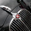 Stock Photo: MK2 Jaguar grille