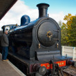 Stock Photo: Caley 828 pulls in Aviemore station