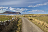 Orkney country lane — Stock Photo